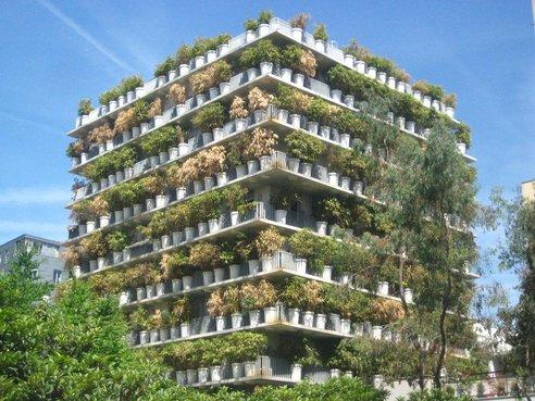 S Apartment Building Balcon King Kong