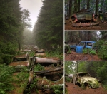 nature-reclaiming-abandoned-places-10